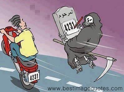 wpid-Speed-Kills-Funny-Picture.jpg
