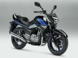 Suzuki Inazuma SpecialEdition