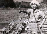 Romusha, Kerja Paksa Soekarno untuk Jepang yang membunuh 300.000Jiwa